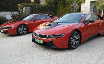 Dekorácie priestorov Gordana Glass pre event spoločnosti BMW - Flora Shop Ateliér - kvetykytice.online