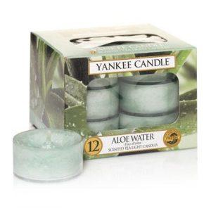 Aloe Water čajová sviečka - Flora Shop Ateliér - kvetykytice.online