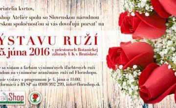 Výstava ruží - Flora Shop Ateliér - kvetykytice.online