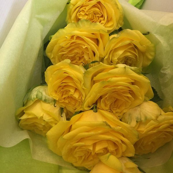 Kytica ruží - Luxurious elegance