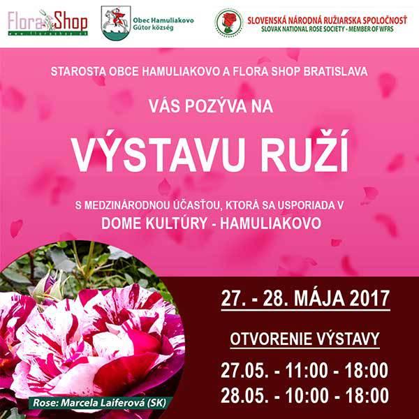Výstava výnimočne šľachtených ruží - Flora Shop Ateliér - kvetykytice.online