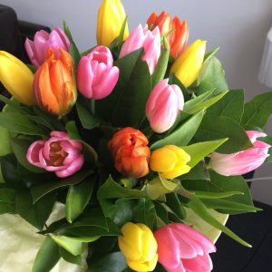 Spring Beauty of Tulips - veľkosť S - foto od zákazníčky